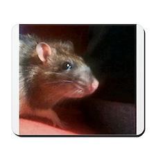 Beautiful Rat Mousepad