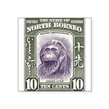 "Funny North borneo Square Sticker 3"" x 3"""