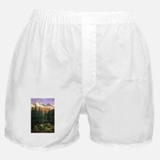 Albert Bierstadt Canadian Rockies Boxer Shorts