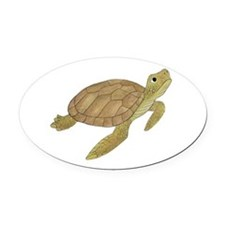 Sea Turtle Oval Car Magnet
