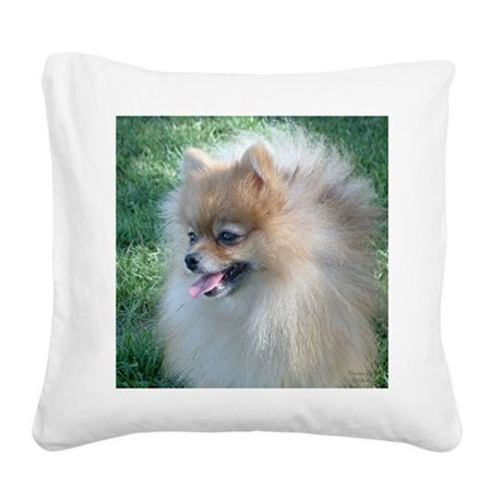 Pomeranian Square Canvas Pillow