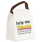 Stolen Sanity Canvas Lunch Bag