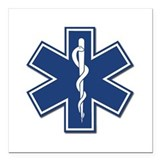Ems Square Car Magnets