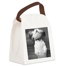 Shih Tzu Nap Canvas Lunch Bag