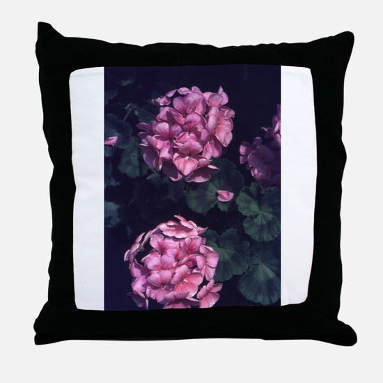 Sterling Silver Rose Throw Pillow