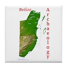 Maya Archaeology - Belize Tile Coaster