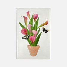 Calla Lily Butterfly Rectangle Magnet