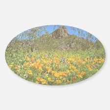Picacho Peak Gold Poppies Decal