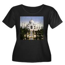 Vintage Taj Mahal T