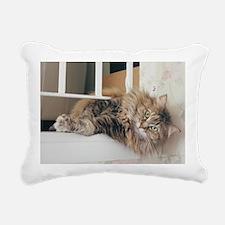 Cute Cat photos Rectangular Canvas Pillow