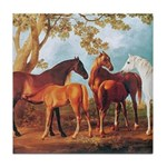 MARES AND FOALS Tile Coaster