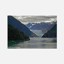 Tracy Arm Glacier Rectangle Magnet