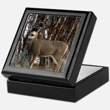 Buck deer Keepsake Box