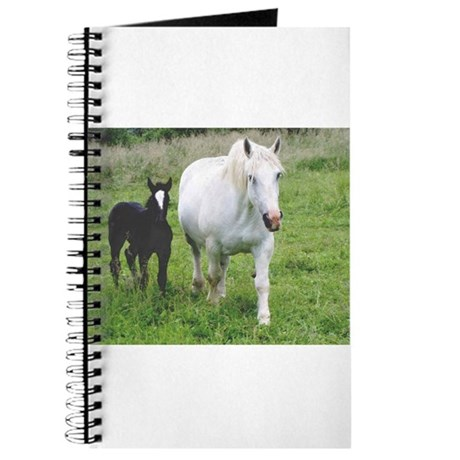 Colt and Horse Love Journal