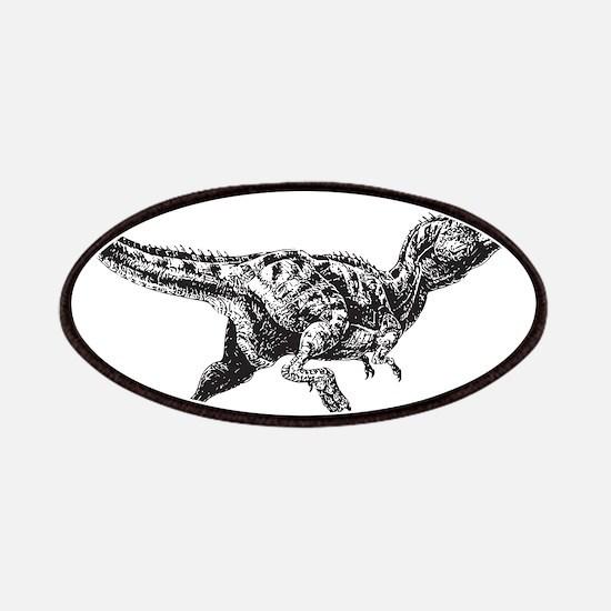 Dinosaur Patches