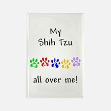 Shih Tzu Walks Rectangle Magnet