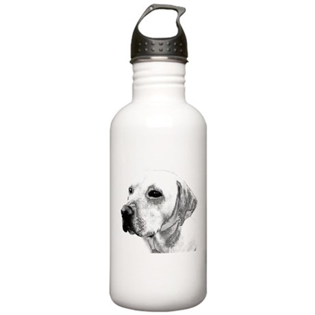 Lab Sketch Stainless Water Bottle 1.0L