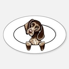 Pointer Peeking Bumper Decal