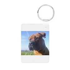 Boerboel's do it better! Keychains
