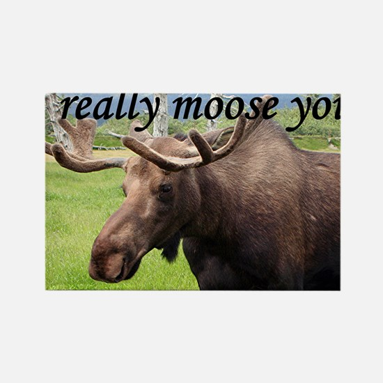 I really moose you Rectangle Magnet