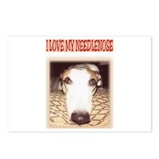 Needlenose Greyhound Postcards (Package of 8)