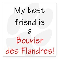 "bestfriendbouvier.png Square Car Magnet 3"" x 3"""