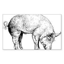 Piggy Decal