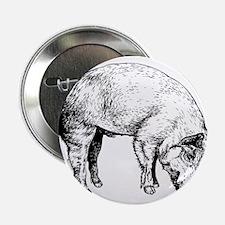 """Piggy 2.25"""" Button"""