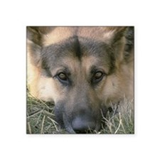 """gsd2.png Square Sticker 3"""" x 3"""""""