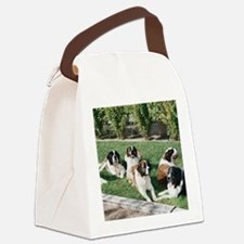 stbernardtile.png Canvas Lunch Bag