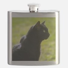 cattile6.png Flask