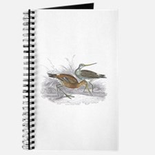 Black Tailed Godwit Journal