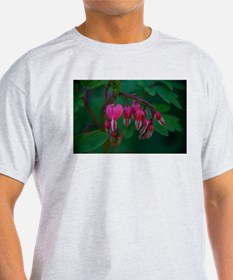 Bleeding Hearts Ash Grey T-Shirt