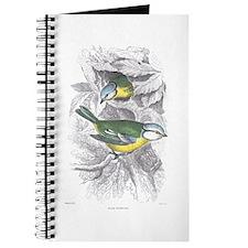 Blue Titmouse Bird Journal