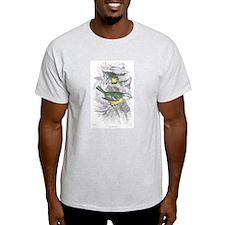 Blue Titmouse Bird (Front) Ash Grey T-Shirt