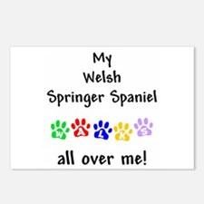 Welsh Springer Spaniel Walks Postcards (Package of