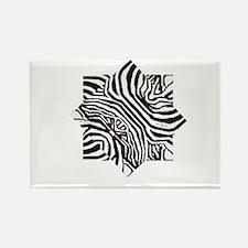 Zebra Star Rectangle Magnet