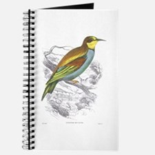 European Bee Eater Bird Journal
