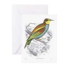 European Bee Eater Bird Greeting Cards (Package of