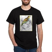 European Bee Eater Bird (Front) Black T-Shirt