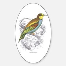 European Bee Eater Bird Oval Decal
