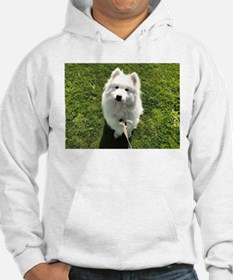 Puppy out for a walk Hoodie