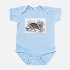 Glossy Ibis Bird Infant Creeper