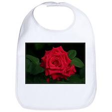 Rose, red Bib