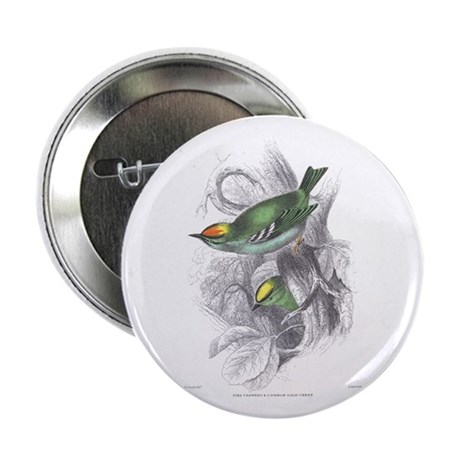 Gold Crest Bird Button