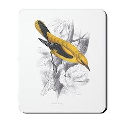 Golden Oriole Bird Mousepad