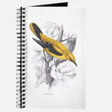 Golden Oriole Bird Journal