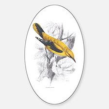 Golden Oriole Bird Oval Decal