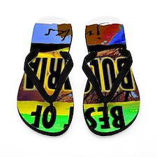 bulgaria art illustration Flip Flops