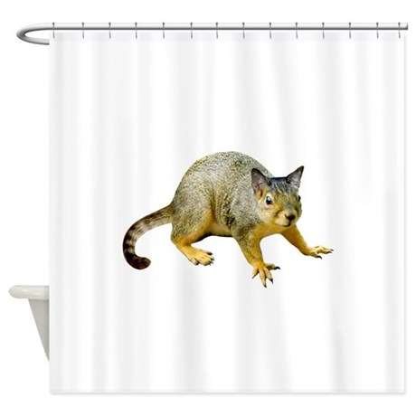 Cat Squirrel Shower Curtain